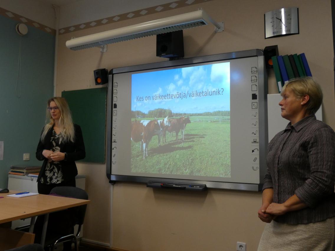 Oma väikest pereettevõtet tutvustasid Palupera põhikooli vilistlased Kaja ja Kaisa Lokk