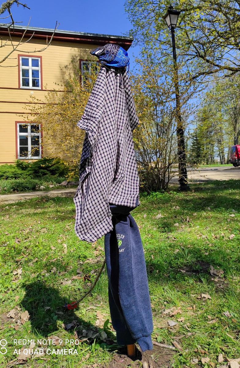 2. klassi õpilaste Maarja, Arturi ja Rasmuse hernehirmitis.